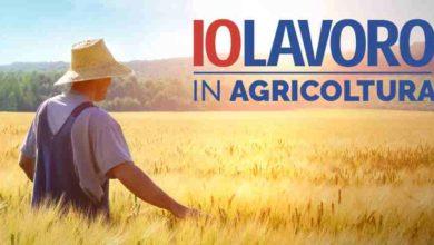 """Photo of """"Io Lavoro in agricoltura"""""""