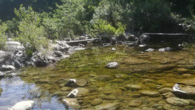 Photo of Situazione fluviale