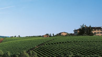Photo of All'Assemblea di Agriturist Alessandria focus sul valore della vacanza in campagna