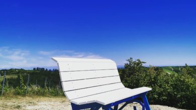 Photo of Montabone: installata la big bench tra i magnifici vigneti Gallo