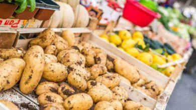 Photo of Sabato a Carcare il mercatino dei produttori agricoli