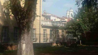"""Photo of """"Fiorissima"""" al Parco Pertini nel prossimo week end"""