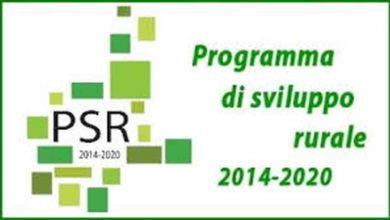 Photo of Osservazioni e contrarietà alle modifiche al Programma di Sviluppo Rurale 2014-2020