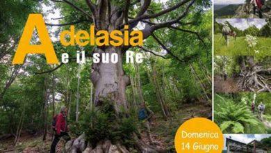 """Photo of Adelasia e il suo Re"""" – Alta Via dei Monti Liguri: riprese le escursioni dalla Riserva dell'Adelasia"""