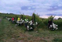 Photo of Camminate Nordic Walking: gli appuntamenti fino al 27 agosto