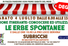 """Photo of Dego: lezione itinerante """"conoscere ed utilizzare le erbe spontanee"""""""