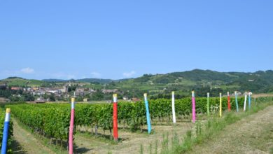 Photo of Bubbio: sulla collina di Sant'Ippolito matite giganti al contrario ai pali di vigna e cavalletto