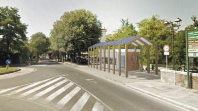 Photo of La valorizzazione del parco fluviale degli Archi Romani e della ciclabilità territoriale