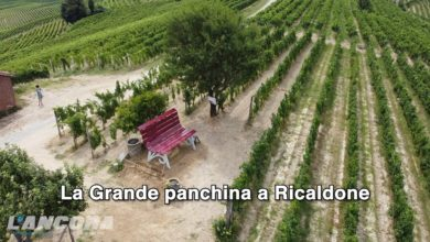 Photo of La Grande panchina a Ricaldone (video)