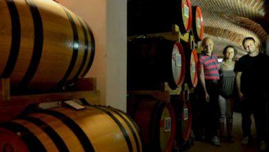 Photo of I 150 anni di attività della distilleria Gualco di Silvano d'Orba