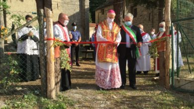 Photo of Per la beata Teresa Bracco: Festa Liturgica e le piante bibliche