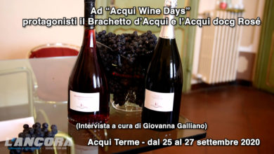 "Photo of Ad ""Acqui Wine Days"" protagonisti il Brachetto d'Acqui e l'Acqui docg Rosé (video)"