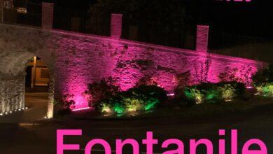 Photo of Fontanile, il ponte si è tinto di rosa per campagna AICR